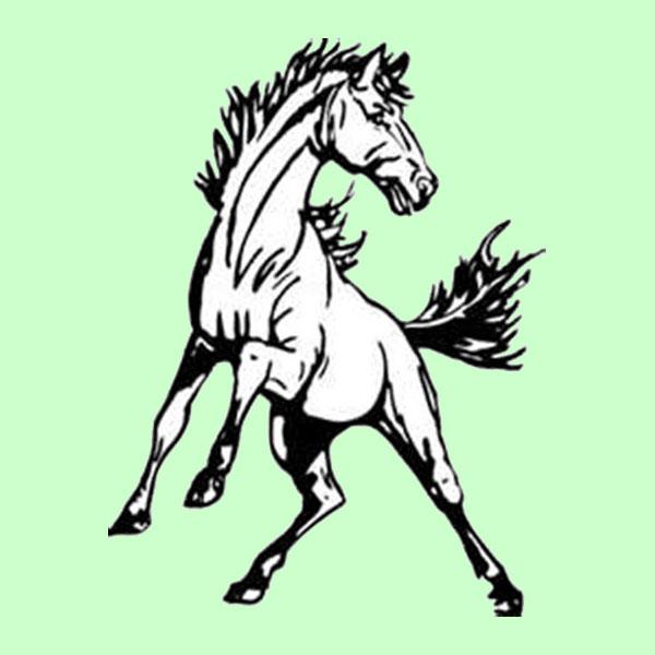 class a championship game park river fordville lankin aggies 38 killdeer cowboys 14 - Green Mustang Horse Logo